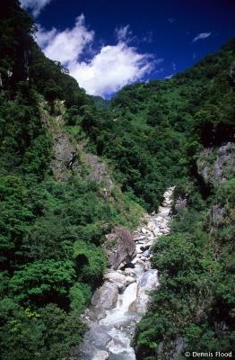Lush Green Taroko Gorge