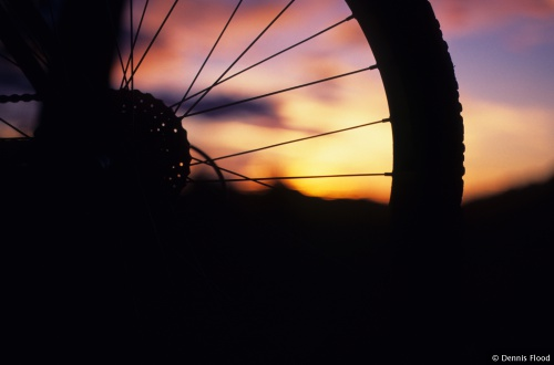 Mountain Bike Wheel at Sunset