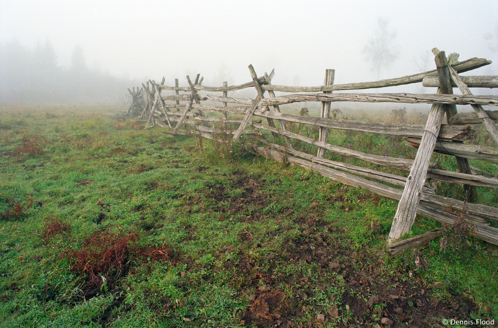 Foggy Wooden Fence