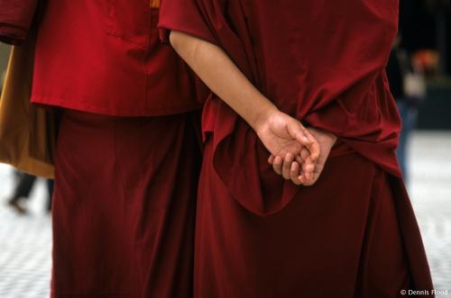 Tibetan Monk Hands