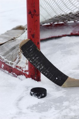 Hockey Stick, Puck and Net