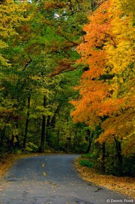 Classic Autumn Scene