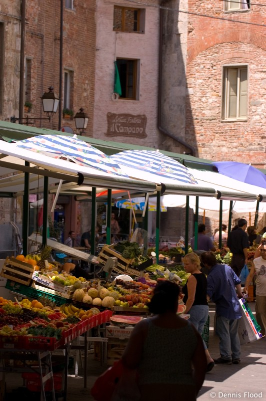 Colorful Morning Market in Pisa