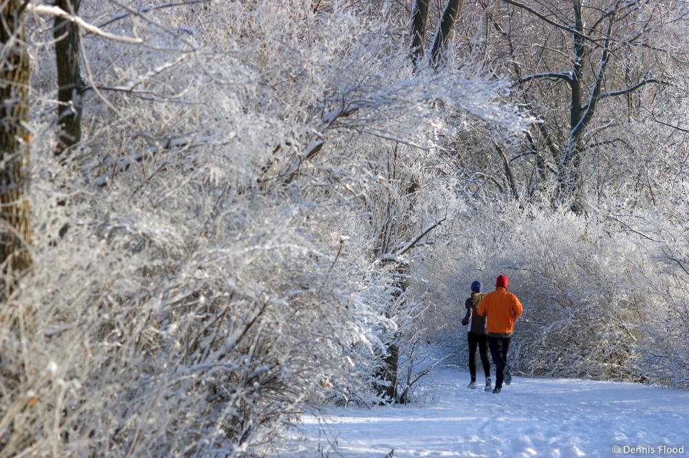 Winter Joggers