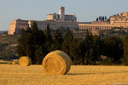 Hay Bales Near Assisi