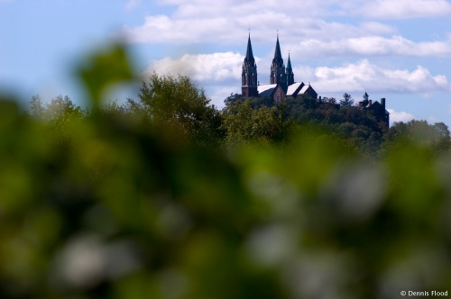 Holy Hill Through the Trees