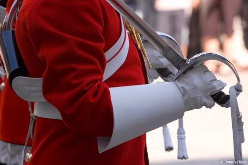 Horse Guard Hands