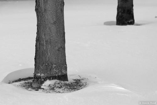 Round Snow Drifts