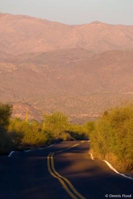Bumpy Desert Road
