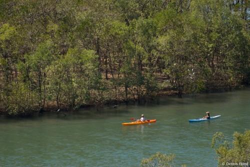 Kayaking Rio Nosara